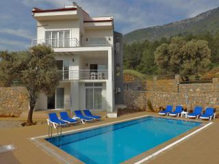 Luxury 5 bedroom villa all with ensuite bathrooms, Ovacik