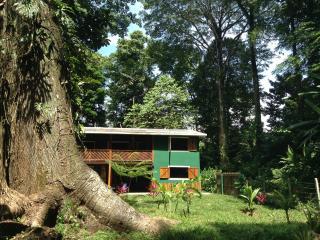 Jungle paradise Big house for holidays, Punta Uva