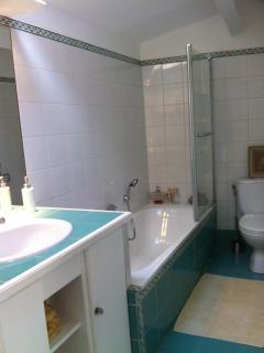 Salle de bains privative avec baignoire et pare douche