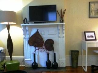 Beautiful  furnished 1 bedroom - Algiers Point