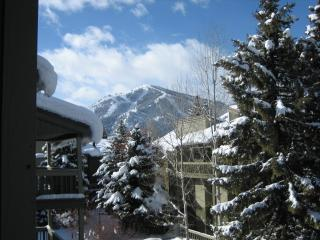 Heart of Sun Valley Resort Sunny PrettyCondominium