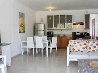 1-bedroom Beachfront Luxury Condo