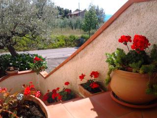'Il Mulinetto' B&B - Casa Vacanze - Canalicchio -