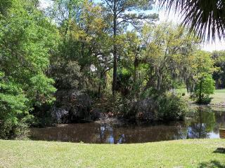 Nature, lagoon and golf views off back deck