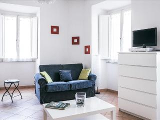 1bdr apt close to the Trevi Fontain