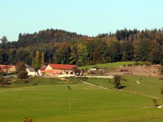Pferdehof Koaser Minerl, Ampflwang
