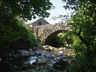 Whillan Beck Cottage - quaint and cosy historic cottage with fabulous views