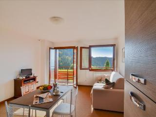Elegant 1bdr next to ski facilities, Montecampione