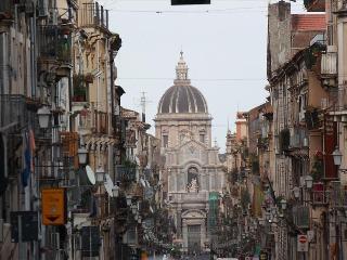 Bright 1bdr apt w/terrace, Catania