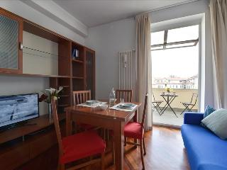 Lovely 1bdr w/terrace and balcony