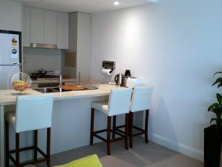 open kitchen with 524L Samsung fridge, gas cook top, SMEG Microwave, diskwasher etc..