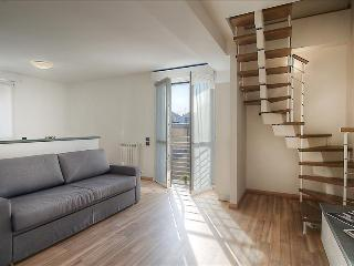 Comfortable 2bdr with terrace, Milan