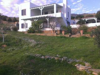 Andros, sunny, traditional villa, Gavrio