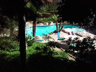 "$100 Off THIS WEEKEND! Jan 20-22. Inquire ~ The Oasis""/""Garden of Eden"" awaits, Oceanside"