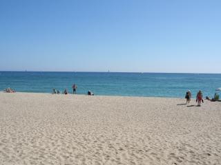 T3 St Cyprien bord de mer-piscine-place de parking