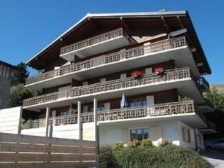 SLEEPS 4. 1 BED APARTMENT WITH DOUBLE SOFABED, Verbier