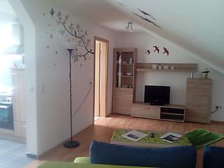 Gemütliche Wohnung mit 1 Schlafzimmer, Pirmasens
