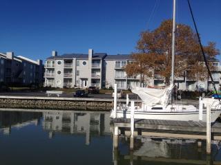 View of condo from marina