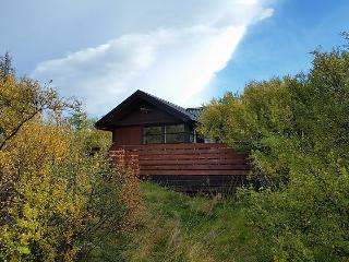 Skógarhreiður Cottage, Hraunfossar