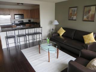 DASHING FURNISHED 1 BEDROOM 1 BATHROOM CONDOMINIUM, Chicago