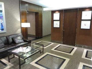 ROOMY AND CHARMING FURNISHED 1 BEDROOM 1 BATHROOM CONDOMINIUM, Chicago