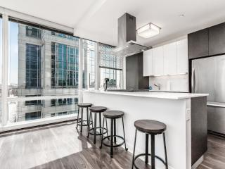 LUXURIOUS 2 BEDROOM APARTMENT IN CHICAGO, Chicago
