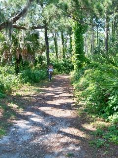 Explore Honeymoon Island nature trail by bike or foot!