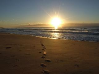 Sunrise Sanctuary - A stunning OCEANFRONT retreat!, Grimstead