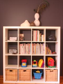 Display cabinet with magazines, toys and more!