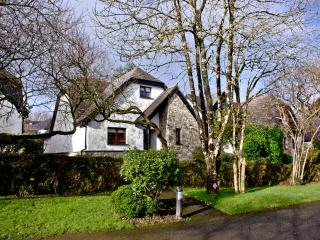 Primrose, Woodland Retreat located in Wadebridge, Cornwall