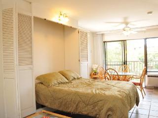Studio - Kihei Akahi Condominium - Walk to the Beach & Shops ~ RA65713