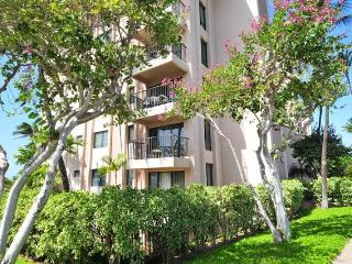 Studio - Kihei Akahi Condominium - Walk to the Beach & Shop ~ RA65713