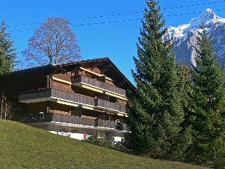 2 bedroom Apartment in Grindelwald, Bernese Oberland, Switzerland : ref 2297279
