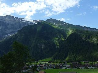 Berg - INH 26871, Engelberg