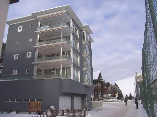 4 bedroom Apartment in Davos, Canton Grisons, Switzerland : ref 5032605