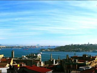 Antique Flat With Sea View Terrace Next To Galata, Istanbul