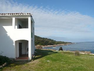 1 bedroom Apartment in Ancone, Corsica, France : ref 5052042