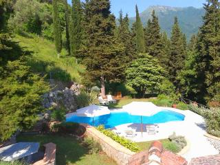 Villa Versiliana with large pool near to Beaches