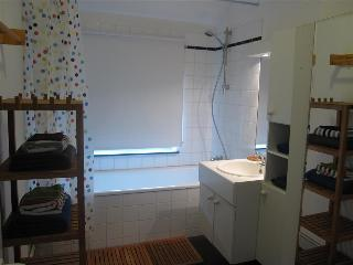 Book Instantly! Le Blonden - 1 BR Apartment, 3rd Floor, Liege