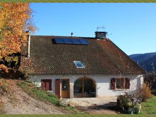 The Charri: renovated farm in beautiful mountains, Rupt-sur-Moselle