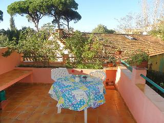 1 bedroom Apartment in Saint-Tropez, Provence-Alpes-Cote d'Azur, France : ref 50