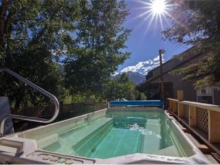 Mountainside Inn - 1 Bedroom Condo #104 - LLH 56952, Telluride