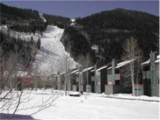 Telluride Lodge - 3 Bedroom Condo #338