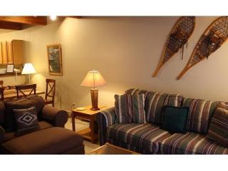 Riverside - 1 Bedroom Condo #A02 - LLH 56988, Telluride