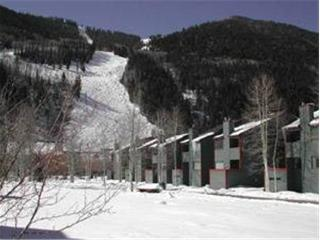 Telluride Lodge - 3 Bedroom Condo #535