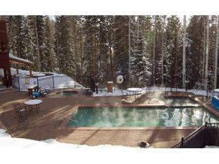 Bear Creek Lodge - 4 Bedroom Condo #405, Telluride