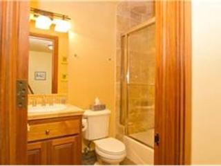 Tres Casas - 3 Bedroom Condo #A, Telluride