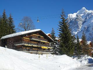 1 bedroom Apartment in Grindelwald, Bern, Switzerland : ref 5031381
