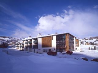 Three Seasons - 2BR Condo Gold #133 - LLH 60096, Crested Butte