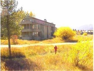 Lupine  - 3BR Condo #1923 - LLH 63322, Teton Village